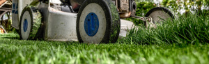 Gräsklippare