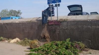 Lämna trädgårdsavfall på återvinningscentralen